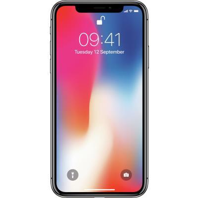 mobiiltelefon Apple iPhone X 256 GB (hall)
