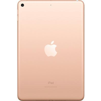 tahvelarvuti Apple iPad Mini 7.9'' 256 GB 4G (kuldne)